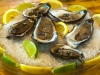 1-annies-table-oysters-pei