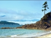 3-bradys-beach-bamfield-british-columbia