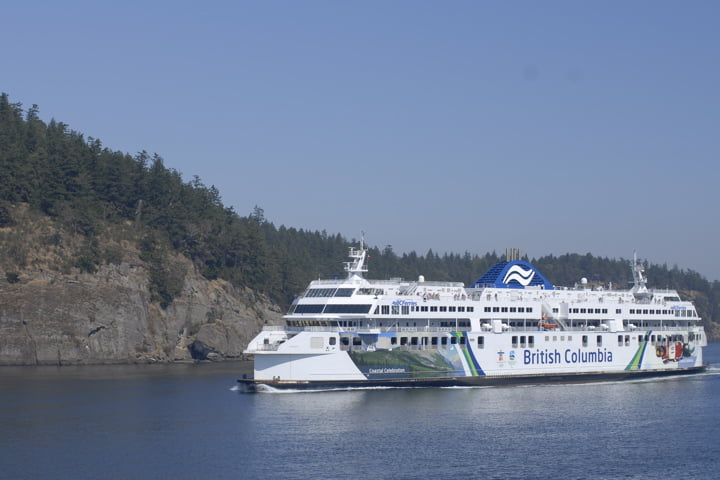 Wildlife Watching A Bonus On Bc Ferries Vacay Ca