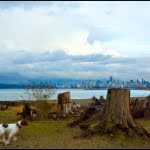 spanish banks, vancouver, beach, scenery, travel
