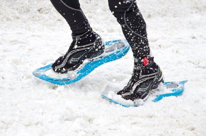 snowshoes, ontario, nature, winter, fun