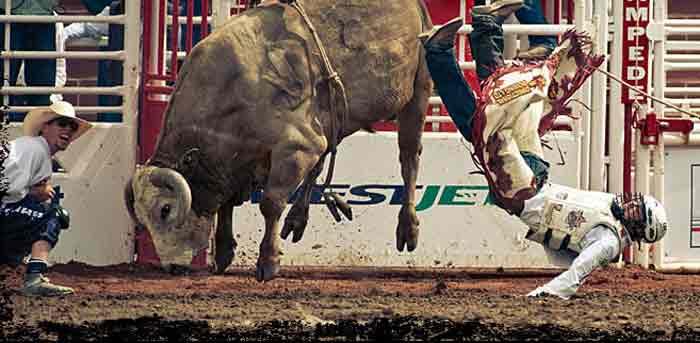 2012 Calgary Stampede Countdown