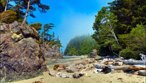 Brady Beach on Vancouver Island. (Julia Pelish/Vacay.ca)