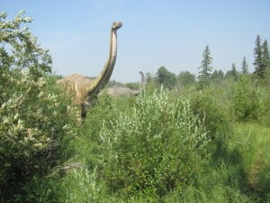 Apatosaurus-jurassic-forest-edmonton