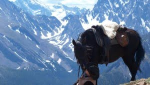kananaskis-country-alberta-horseback-riding