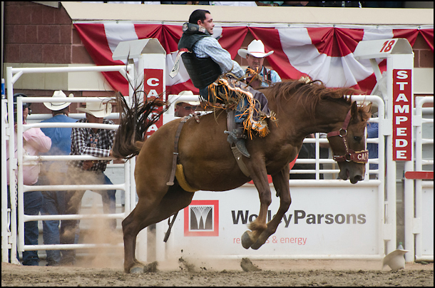 Highlights Of The 100th Calgary Stampede Vacay Ca