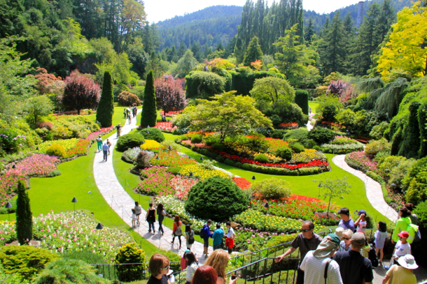 butchart gardens blooms all year