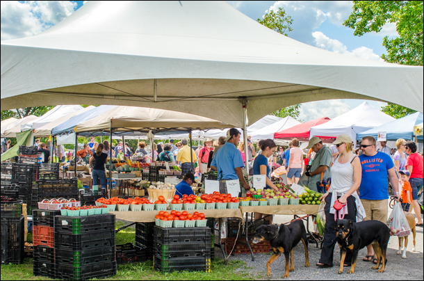 save-money-food-travel-ottawa-farmers-market