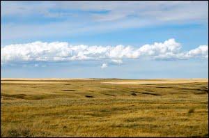 Alberta-prairies