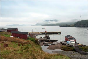 Rugged-Beauty-new-bonaventure-newfoundland