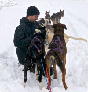 ross-goddard-dogsled-adventures-revelstoke-bc