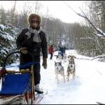 dog-sledding-winterdance-ontario