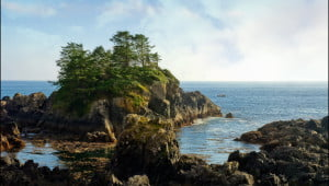 pacific-rim-park-tofino-british-columbia