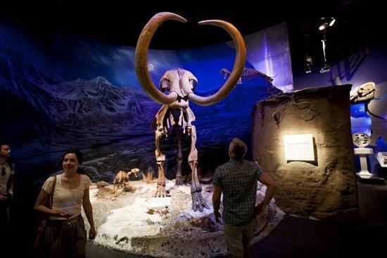 Drumheller-Royal-Tyrrell-Museum-Alberta-dinosaurs