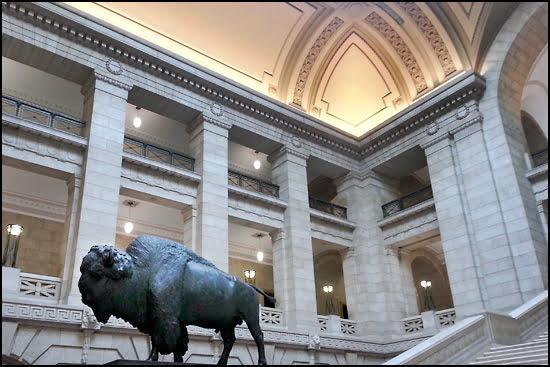 Bison in Winnipeg Legislature Building. (Tamara Baluja/Vacay.ca)