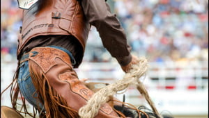 Cowboys at the Calgary Stampede. (Julia Pelish/Vacay.ca)