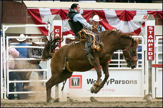 The Greatest Outdoor Show on Earth at the Calgary Stampede. (Julia Pelish/Vacay.ca)