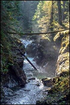 little-qualicum-falls-provincial-park-Parksville-vancouver-island-bc