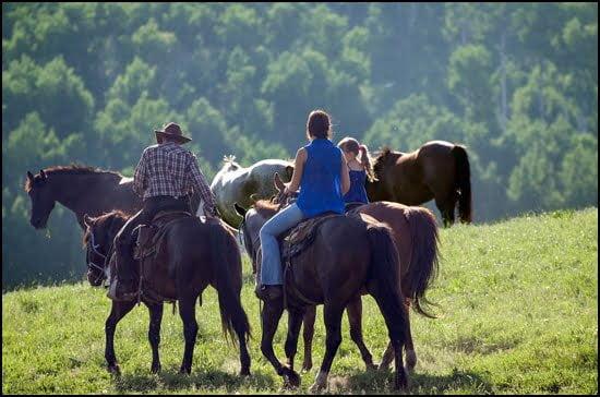 anchor-d-riding-horseback