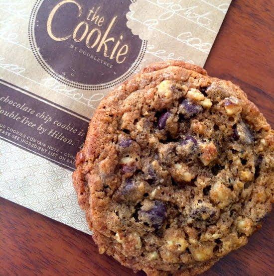 cookie-hollis-halifax