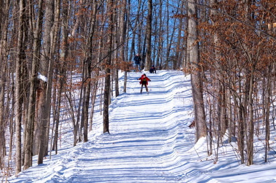 cross-country-skiing-chateau-montebello-quebec