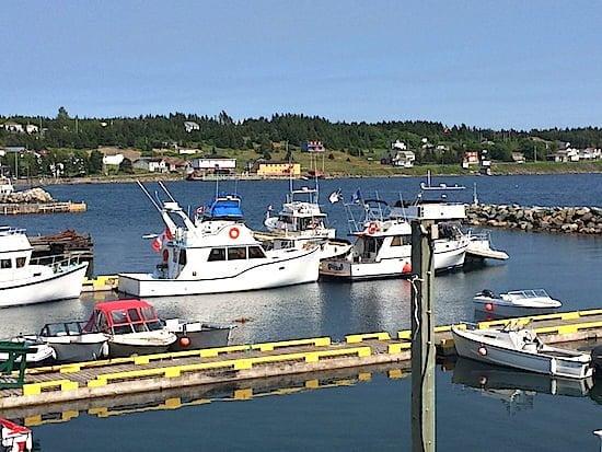 Dildo Harbour-Newfoundland
