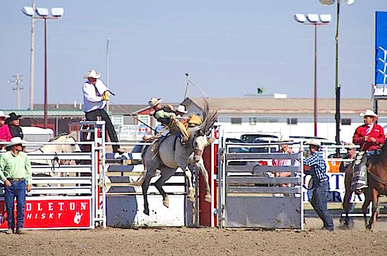 Whoop-Up Days Lethbridge Rodeo