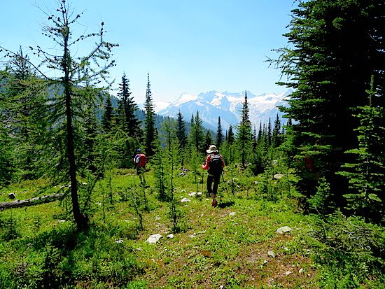 Meadows Hike_BC_Kootenays