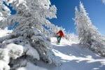 Silver-Star-skier-british-columbia