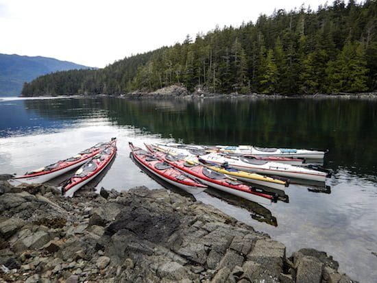 row-advenutes-kayaks-johnstone-strait