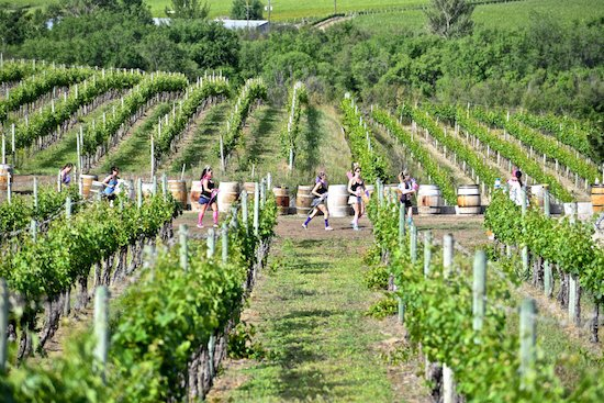 Half-corked-marathon-runners-vineyard