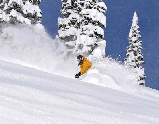 fernie-skier