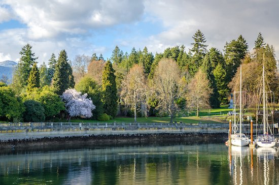 vancouver-spring-stanley-park-bc