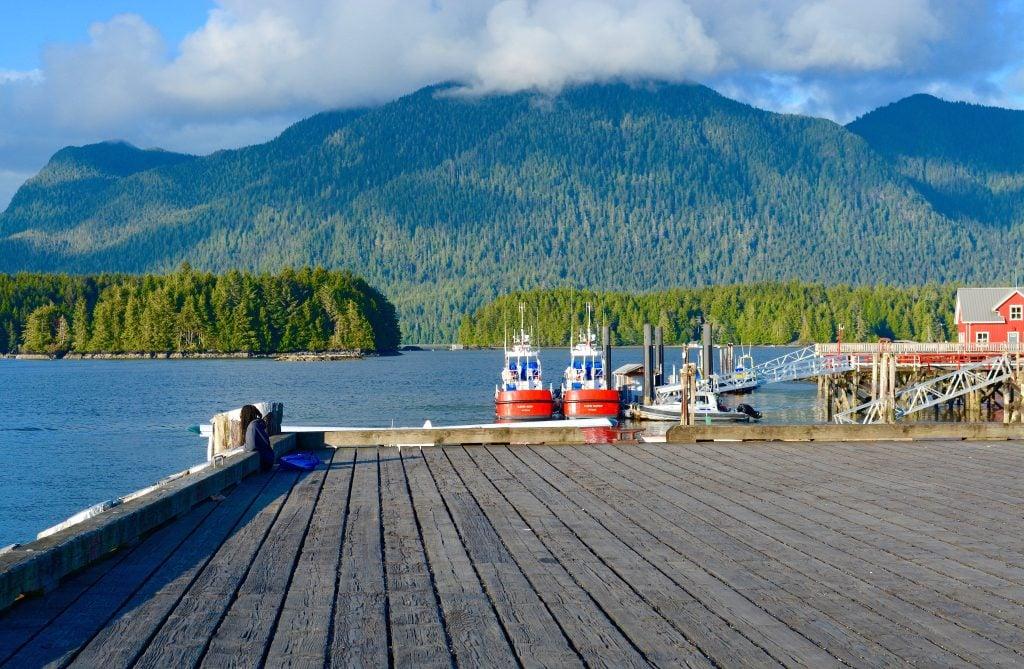 tofino-dock