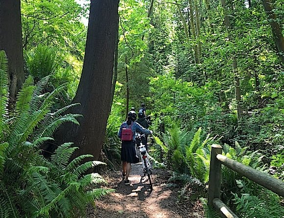 cycle-city-vancouver-stanley-park-path