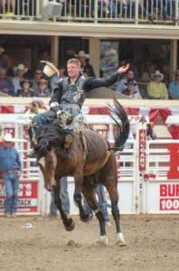 jake-vold-bareback-riding-calgary-stampede-rodeo