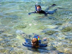 scuba-diving-tobermory