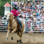 Calgary-Stampede-barrel-racing