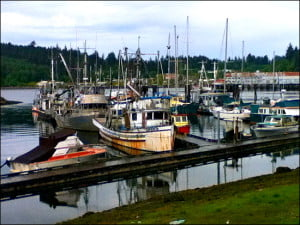 alert-bay-docks-british-columbia