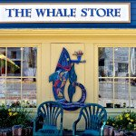the-whale-store-st-andrews-new-brunswick