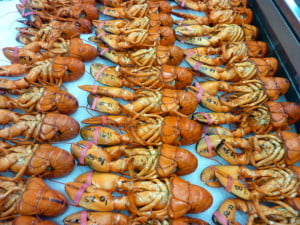 collins lobster fishermans market alma new brunswick