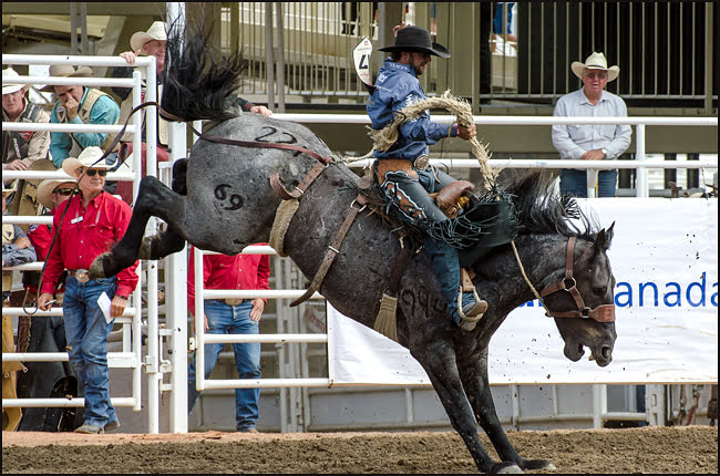 Wade Sundell of Boxholm IA took the highest score in the Saddle Bronc performance on Day Seven of the Calgary Stampede. (Julia Pelish/Vacay.ca)