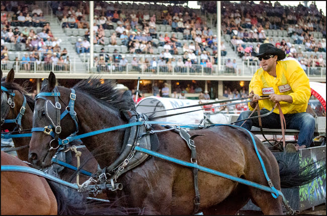 Chuckwagon driver Kurt Bensmiller starting the race on day Seven went on to win his first Rangeland Derby championship and $100,000 at the 2014 Calgary Stampede