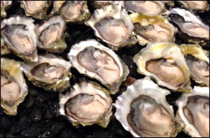 Boulevard oysters vancouver
