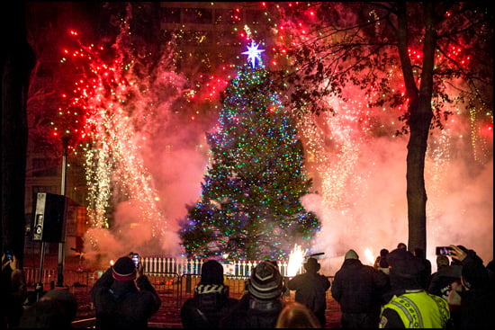 Bostonians celebrate the arrival and lighting of their Christmas tree from Novia Scotia on December 4, a tradition that began in 1971 as a way of thanking the people of Massachusetts for support after the Halifax Explosion. (The Province of Nova Scotia)