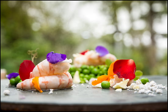 BC_spot_prawns_The_Pointe_Wickaninnish_Inn_Tofino