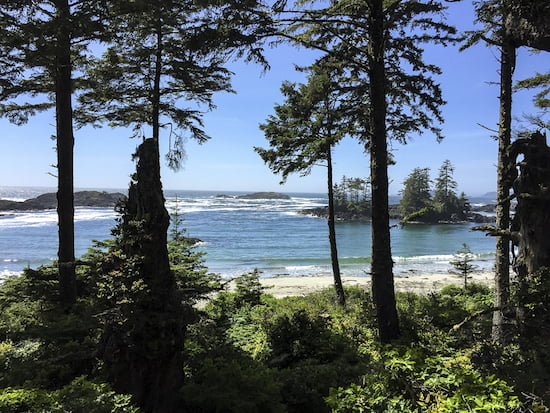 view-from-ucluelet