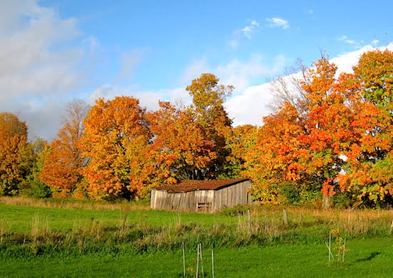 fall-colours-eastern-townships-quebec