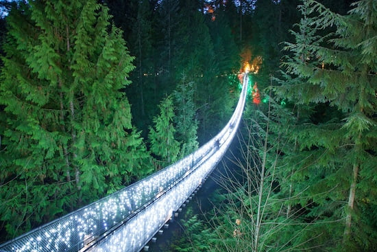 Christmas at Capilano Bridge-Canyon-Lights
