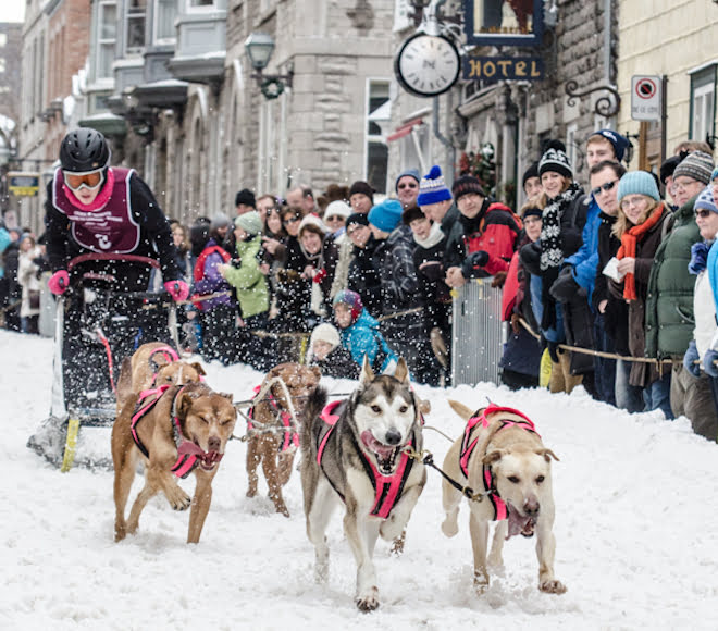 quebec-city-quebec-carnival-dog-sled-race